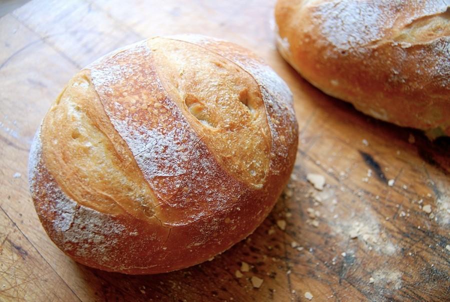 bread lyme disease